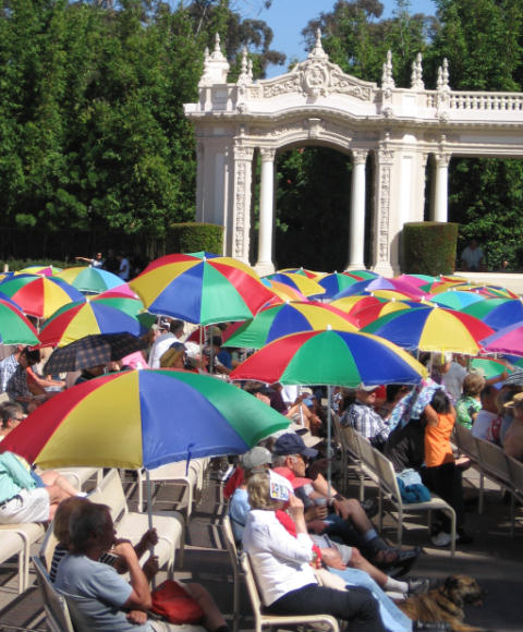 colorful umbrellas at sunday organ concert