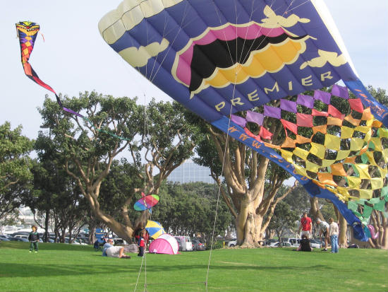 big colorful kite in park by seaport village