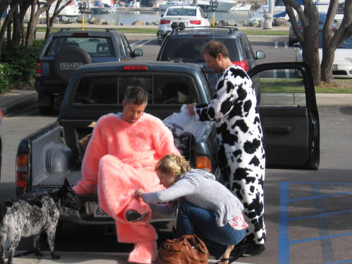 men dress as a pig and cow to support animals