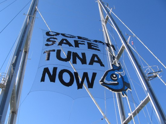 ocean safe tuna now banner between masts of rainbow warrior