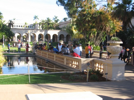 Crowd gazes into small section of Balboa Park reflecting pool.