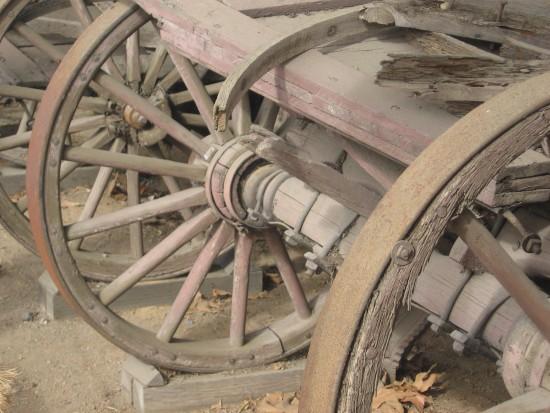 Peering through old wagon wheels.