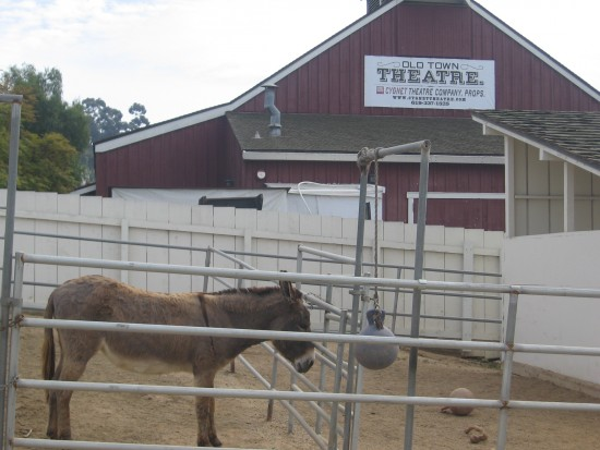 Donkey awaits young visitors to historic Seeley Stable.