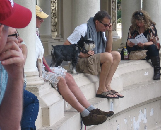 People and pooches enjoy the organ concert from the colonnade.