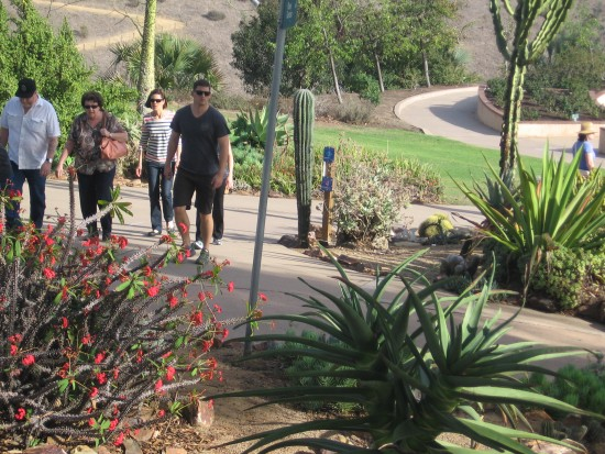 People take a walk through Balboa Park cactus garden.