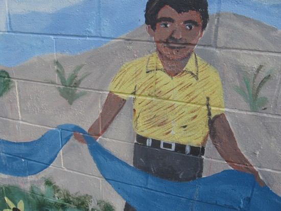 Small portion of the Our River mural in Mission Valley.
