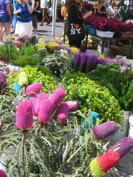 Endless bright flowers can be found at the Mercato.