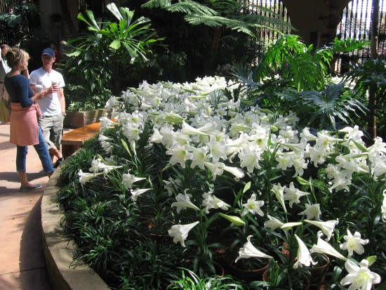 Botanical Building visitors near display of Easter lilies.