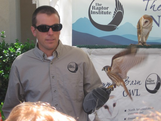 Two rescued raptors shown to crowd on El Prado.