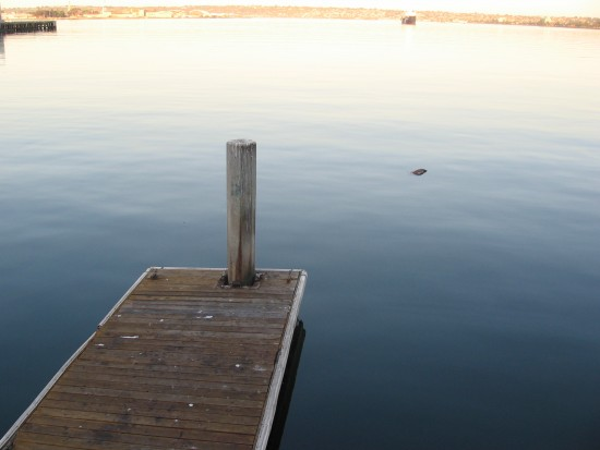 Anthony Fishette's boat dock on a tranquil San Diego Bay.