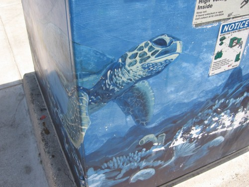 Turtle head peeks around Coronado utility box.