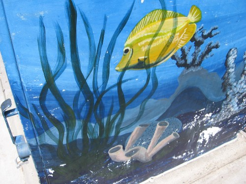 Yellow fish swims through an underwater scene.