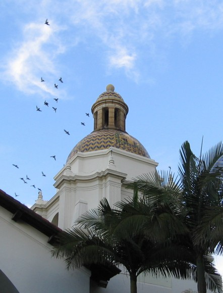 Birds fly over one of the distinctive domes.