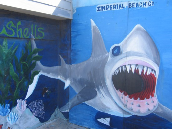 Shark spotted on wall of Imperial Beach building!