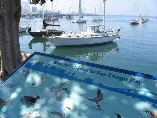 Wildlife sign and boats on the North Embarcadero.