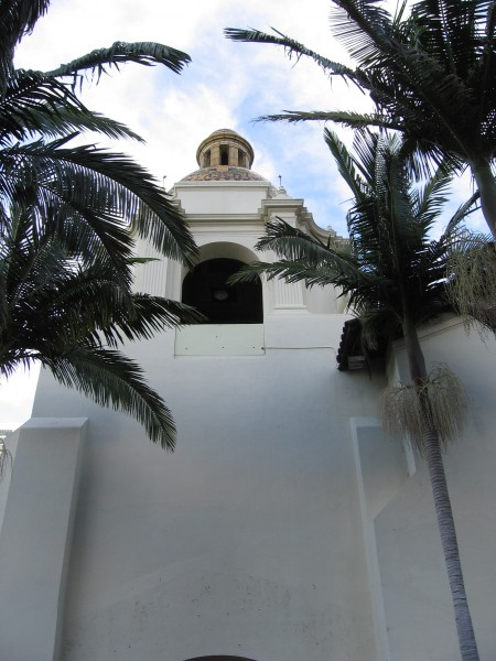 Looking up through palm trees toward the dome.