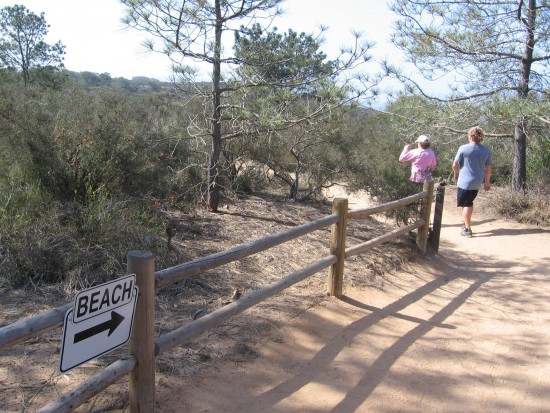 Hiking to the beach from trailhead in Torrey Pines State Reserve.