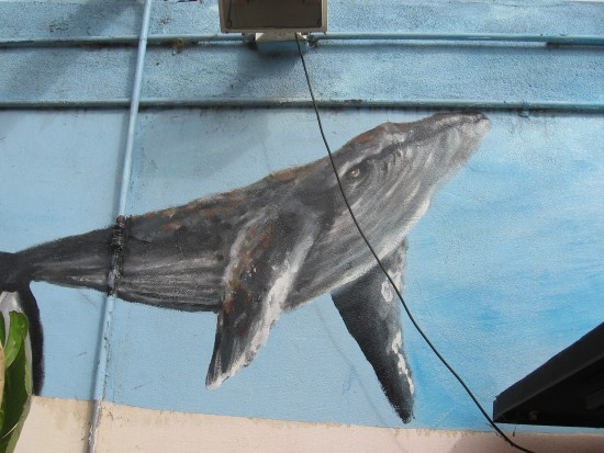 This part of one mural contains a gray whale.