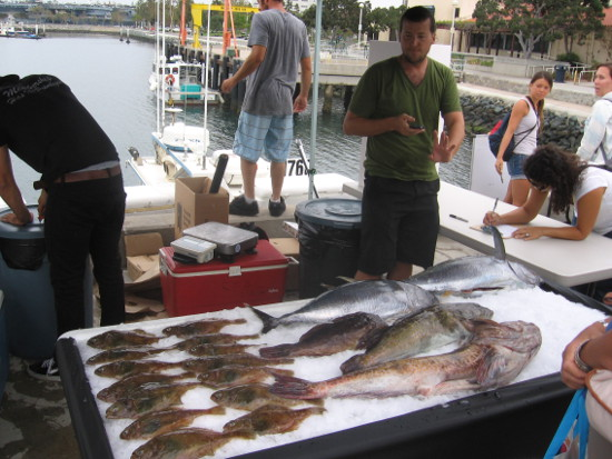 Lots of fresh fish sold to the public on San Diego's Embarcadero.