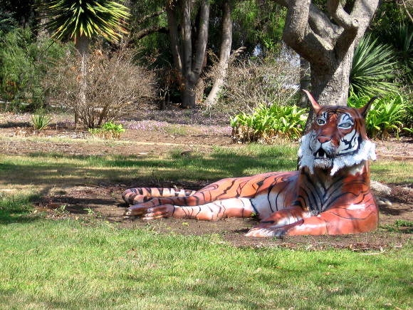 Yikes! Now it's a tiger that I see! There are wild animals all over the place.