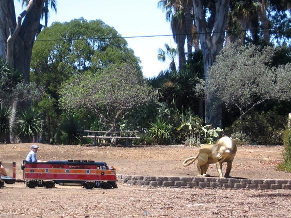 A silent lion watches as the tiny train glides through Balboa Park.