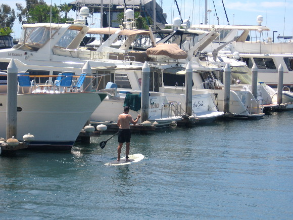 Man on paddleboard enjoys calm water in the marina.