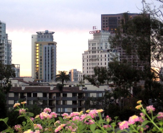 A morning look from Balboa Park toward my Cortez Hill neighborhood.