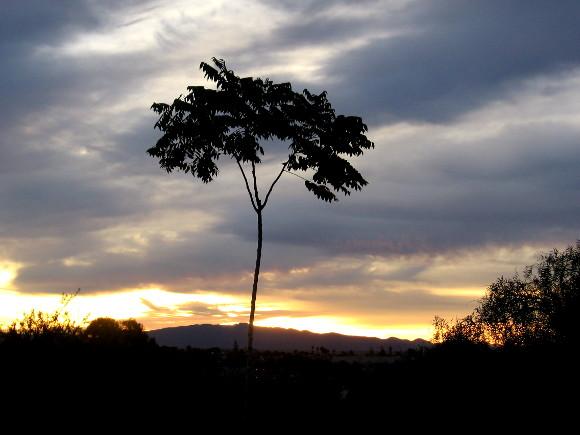 Brilliant sunrise illuminates the horizon east of San Diego.
