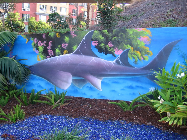 A shark has been spotted next to a gas station's parking lot!
