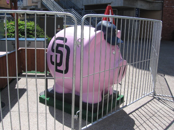 Giant pig with Padres logo and baseball cap seems trapped behind bars at Petco Park!