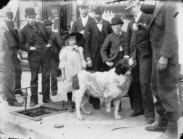 Historical photograph shows Bum among his many San Diegan human friends.