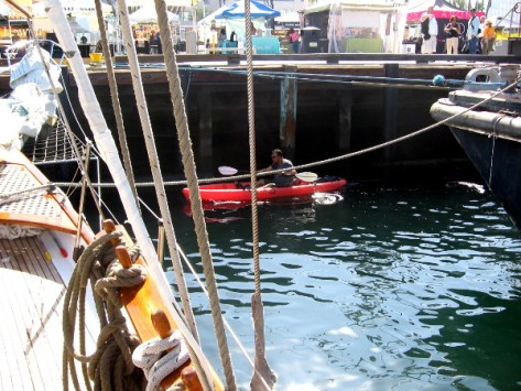 Lots of kayakers were cruising around the assembled tall ships.