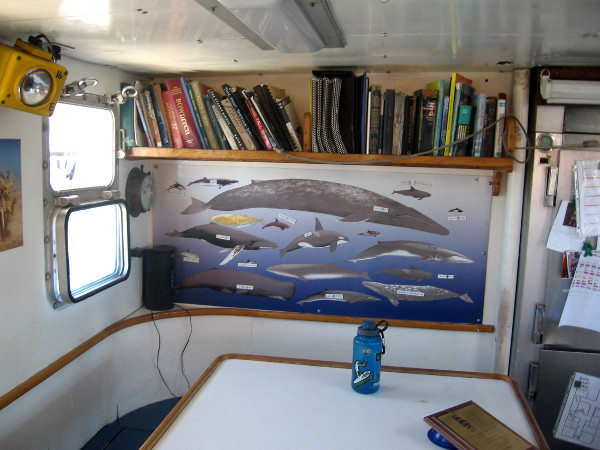 A small library and a chart depicting different marine life.