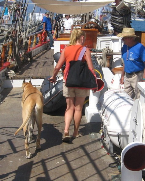 Dogs enjoyed visiting the cool ships, too!