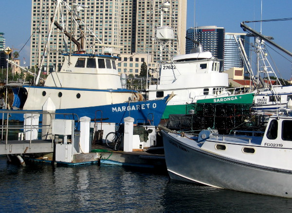 A number of fishing vessels docked inside San Diego's Tuna Harbor.