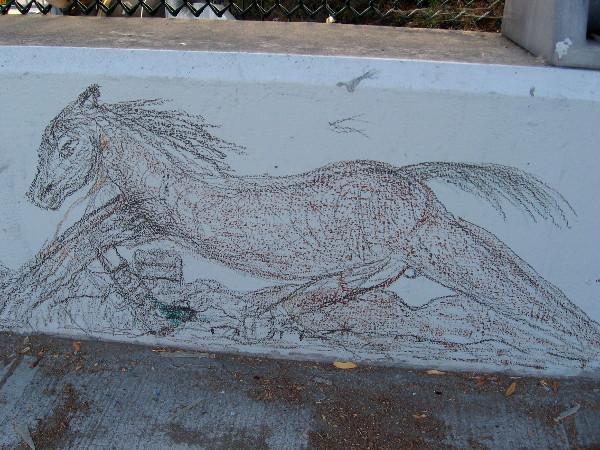 A miniature horse runs along a sidewalk in downtown San Diego.
