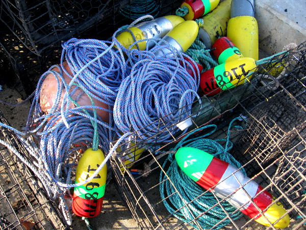 New ropes, floats and lobster traps on San Diego's Tuna Harbor pier.