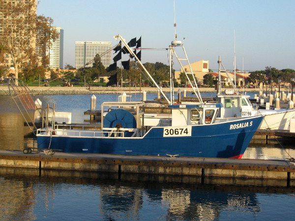 A couple more fishing boats tied up in beautiful San Diego Bay.