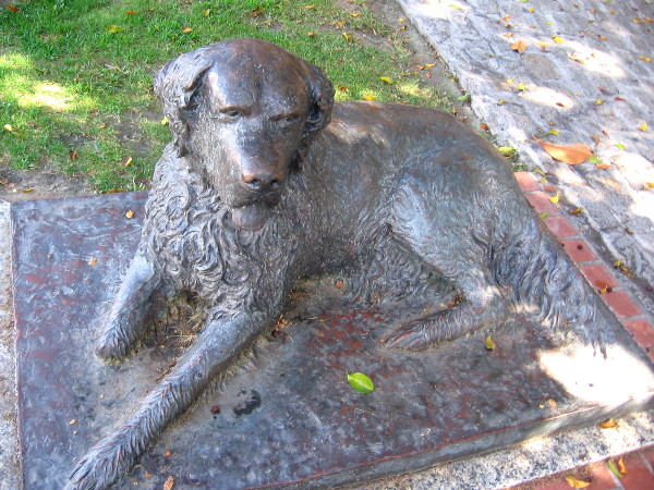 Sculpture of Bum, San Diego's town dog, in a grassy Gaslamp pocket park.