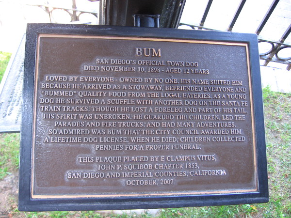 Plaque remembers history of Bum in early San Diego and his legendary exploits.