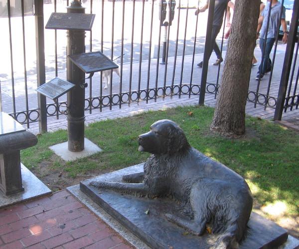 Bum waits faithfully downtown next to the William Heath Davis House museum.