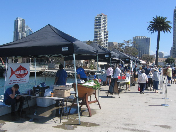 Fish markets in san diego there is a public demand for Fish market san diego ca