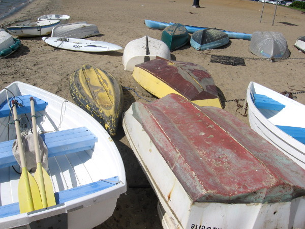 Scattered rowboats and kayaks create a fascinating image.