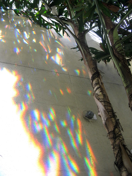 Colorful light like a rainbow cast by prism kite onto building side.