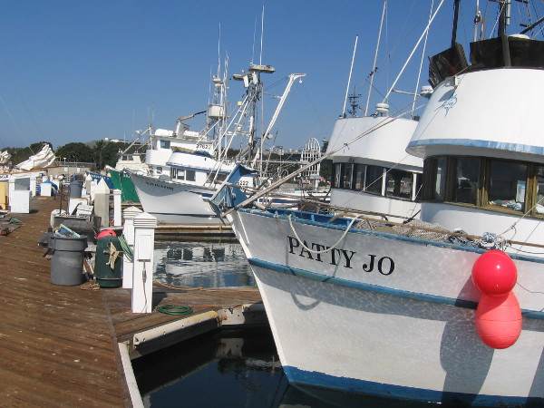 Gazing down one dock at a line of fishing vessels in San Diego.