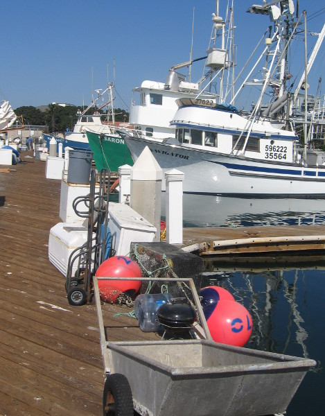 A clutter of work gear all along the wooden dock.