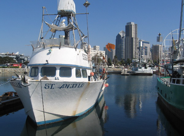 Downtown highrises in the blue sky behind a Tuna Harbor boat.