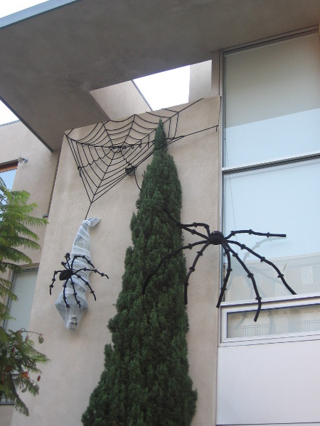 Spiders on side of Little Italy building wrap a skeleton.