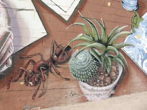 Ant and cacti grown to gigantic proportions beside an ordinary sidewalk.
