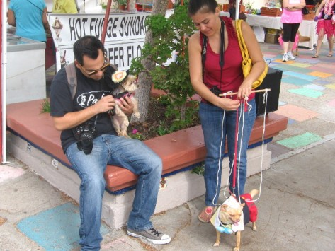 A puppet-dog prepares for the canine costume competition in Spanish Village.